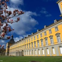 [NEW] Center for Dependency and Slavery Studies (BCDSS) at the University of Bonn, Germany